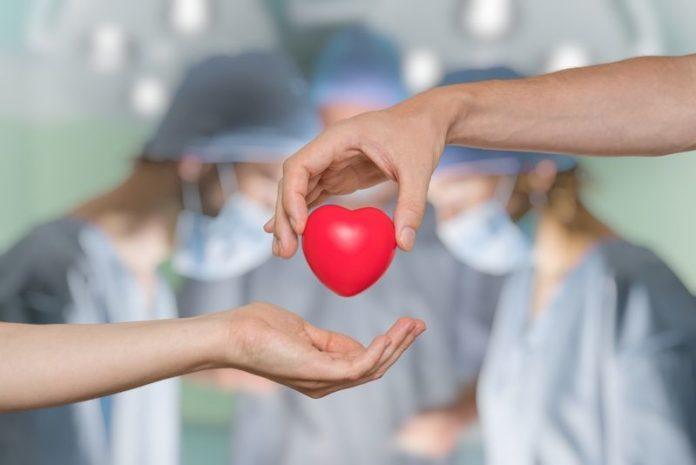 Στην αναμονή 60 νεφροπαθείς στη Μαγνησία για μεταμόσχευση